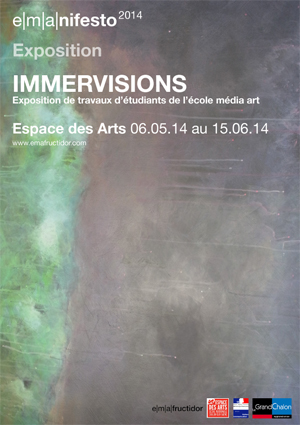 immervisions web