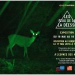 les_feux_de_la_deesse